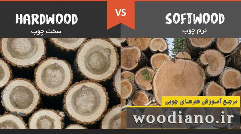 این تصویر در مطلب چوب چیست بیانگر تفاوت دو نوع چوب Softwood (نرم چوب) و Hardwood (سخت چوب) را نشان می دهد.